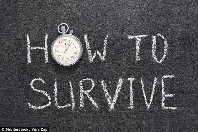Водич за преживување за старт-ап: Пет златни правила за да обезбедите успех на Вашиот нов бизнис