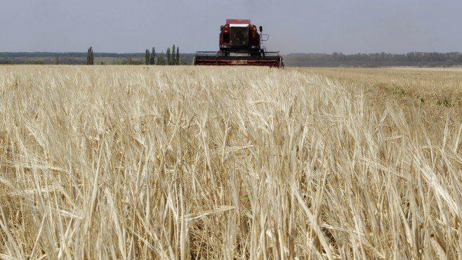 Преку јавен оглас ќе се дава во закуп над три хектари државно земјоделско земјиште