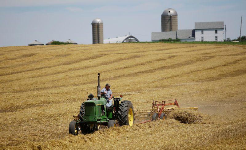 1% од фармите обработуваат 70 % од светското земјоделско земјиште