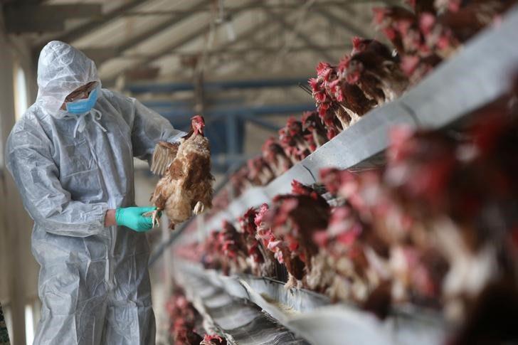 Во Охрид презентирани можностите што ги нуди ИПАРД мерката за диверзификација на фарми и развој на бизниси