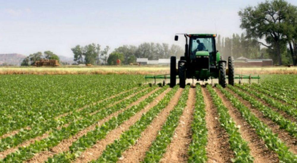 Бачовски: Исплатени 238,6 милиони денари субвенции за повеќе земјоделски мерки
